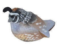 Bird - Plush - California Quail