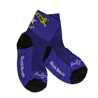 Nevada Bicycle Sock