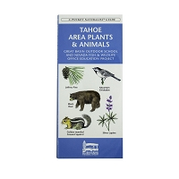 Tahoe Area Plants and Animals by Great Basin Outdoor School
