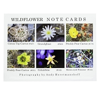 Note Cards - Assortment - Statewide Nevada Number 9