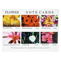 Note Cards - Assortment - Statewide Nevada Number 11