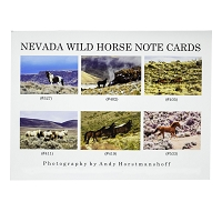 Note Cards - Statewide Assotment six cards Set 12