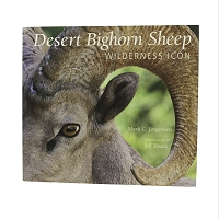 Desert Bighorn Sheep – Wilderness Icon  by Mark C. Jorgensen