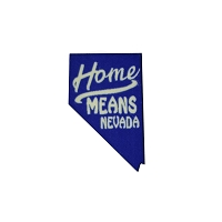 Lapel Pin - Home Means Nevada in Blue and White