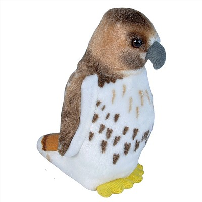 Predatory Bird - Plush - Red Tail Hawk